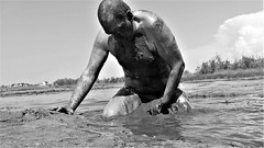 covered with mud bw (marcostetter) Tags: nature lake wet wetlook water wetbody wetfashion fashion weather hunk hiking landscape legs mud messy muddy swamp marsh bodyart topless masculine chest wetland naked nude fkk croatia nipples