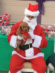 Ginger telling Santa her list