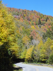 DSC07695 (TerrMys) Tags: northcarolina nc southern appalachians fall autumn october