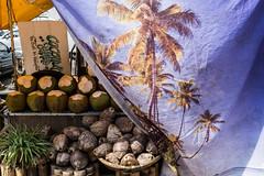 (@AmirsCamera) Tags: petalingstreet kualalumpur coconuts tree plant fruit nut colour color fujifilm x100s december 2018 streetphotography street city urban food