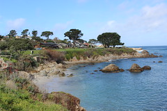 IMG_9796 (mudsharkalex) Tags: california pacificgrove pacificgroveca