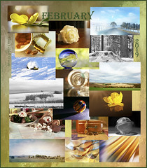 A strange February (Elisafox22) Tags: elisafox22 february 2019 collage snapshot images summary thumbnails border leaves flowers landscape snow trees infrared glass household cooking sushi macro spoons marble coffee indoor stilllife winter blackandwhite postprocessing abstract aberdeenshire scotland elisaliddell©2019