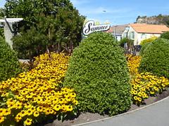 Summer Christchurch (geoffreyw@kinect.co.nz) Tags: summer christchurch