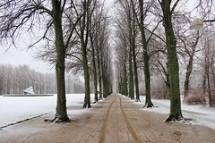 Snowy road ahead (Ole - OFF for a while) Tags: søndermarken valby copenhagen denmark snow christmas