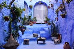 Chefchaouen, Morocco, January 2019 D810 829 (tango-) Tags: chefchaouen bluecity villaggioblu bluevillage morocco maroc 摩洛哥 marruecos марокко المغرب