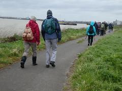 UK - London - Near Rainham - Walking along Thames Path (JulesFoto) Tags: uk england northeastlondonramblers london rainham walking thamespath riverthames