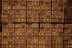 全てはさつまいものため (atacamaki) Tags: xt2 50140 xf f28 rlmoiswr fujifilm jpeg撮って出し atacamaki japan ibaraki kasumigaura かすみがうら さつまいも box day life color さんぽ 日本 茨城