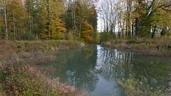 Jägerberg Herbst (Aah-Yeah) Tags: jägerberg jagerbergl rückhaltebecken grassau achental chiemgau bayern herbst autumn spiegelbild