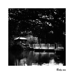 201903-10 國父紀念舘 翠湖 (BALY WU) Tags: 國父紀念舘 翠湖 hasselblad 80mm f28 trix 400 lc29 503cx film taiwan taipei
