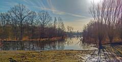 Polder - Bazel - Belgium (roland_tempels) Tags: nature water naturereserve rupelmonde belgium sky sunlight supershot trees polder