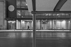 Toronto 2018_270 (c a r a p i e s) Tags: carapies cityscapes 2018 nikondf canada ontario toronto fotografiaurbana bw blackwhite blancoynegro urbanidad urbanphotography urban urbvanidad urbvanity urbanphoto streetphoto streetlife streetphotography notasdeextramuros