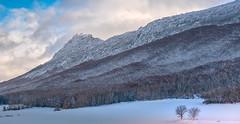 sierra de Toloño 1 (juan luis olaeta) Tags: paisajes landscape snow elurra nieve photoshop fujifilmxt2 araba basquecountry invierno uda