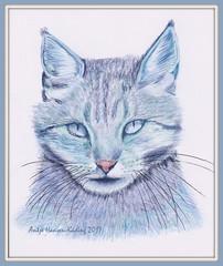 Blaue Hexe - Blue Witch (antje whv) Tags: kunst art zeichnungen drawing buntstift polychromos katze cat crayondrawing