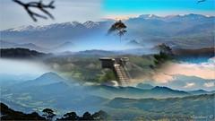 ENTRE LA BRUMA- MIRADOR DEL FITU (Angelines3) Tags: mirador picosdeeuropa nieve nubes naturaleza bruma cielo árboles montañas asturias sierra collage