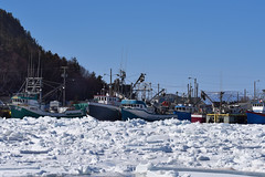 Going Fishing?  ...  Not Any Time Soon! (Zircon_215) Tags: fishingboats bayofislands frenchmanscove newfoundland westernnewfoundland ice blocked landscape