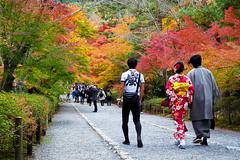 Jinrikisha (eeshawn.) Tags: japan kyoto arashiyama rickshaw kimono temple nisonin autumn momiji eeshawn