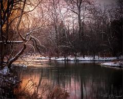 December Sunset (soupie1441) Tags: london ontario canada river water sunset winter trees snow nikon d750 tamron 2470mm