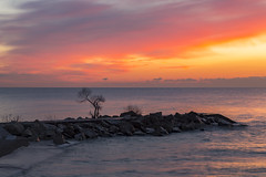 November skies ll ( explored) (Nicoli OZ Mathews) Tags: beach water sun toronto ontario landscape tree canon canoncanada