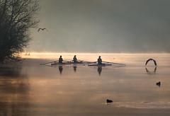 Canottieri Tritium (Eros Penatti) Tags: canottieri adda trezzodadda nebbia fog fiume river lombardia italia