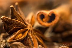 De la graine semée, aux sillons parfumés...! - Seeded seed, scented furrows ...! (minelflojor) Tags: épice anis badiane étoilé canelle naturemorte sec etoile baton flou bokeh macro arome mélange ingrédient aniseed star anise spice blossom apple aroma ingredient graine seed tamronsp90mmf28dimacro11vcusd nourriture