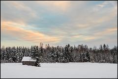 Winter evening (Jonas Thomén) Tags: haybarn barn snow field tree trees forest woods treeline clouds evening hdr hölada lada snö åker linda träd skog moln kväll sandö