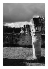 Ruines de l'abbaye de Vauclair (DavidB1977) Tags: france hautsdefrance picardie aisne bouconvillevauclair ruines abbaye colonne fujifilm x100f monochrome bw nb