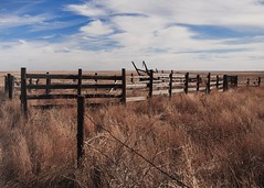 Abandoned to the Prairie (ddurham000) Tags: prairie fence wood barbedwire colorado
