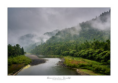 Waioeka Gorge - New Zealand (Dominic Scott Photography) Tags: dominicscott newzealand bayofplenty gisborne whakatane waioeka gorge mist misty river sony sel2470gm ilce7rm3 gmaster breathtakinglandscapes
