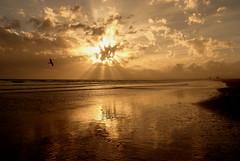 Light pathway. Happy New Year! (Behappyaveiro) Tags: algarve portugal europa sea atlanticocean oceanoatlântico mar seascape felizanonovo sun sol beach praia faro