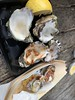 "oysters19 • <a style=""font-size:0.8em;"" href=""http://www.flickr.com/photos/64263757@N00/32634623777/"" target=""_blank"">View on Flickr</a>"