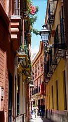 Street of Sevilla (joannab_photos) Tags: walk sun spain sevilla streetlife colors