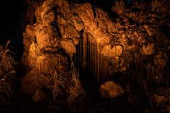 Winterlichter Palmengarten 2019 (janeway1973) Tags: winterlichter palmengarten lights color art lichter lichtkunst kunst night nacht dark darkness dunkel dunkelheit farbenfroh farbig bunt kunstwerke artsy contrast licht kontrast deutschland hessen germany frankfurt mainhattan