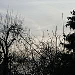 P2240469 thumbnail