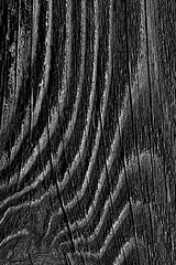 Wood fence close-up with wood grain and wood knots (Jim Corwin's PhotoStream) Tags: abstract aging backgrounds board builtstructure closeup contrast cracked design designelement deterioration fence fenceboard gray grayish knot knottedwood line lumberindustry macrophotography material naturalpatterns nobody oldboards outdoors patterns photography plank roughsurface shapes simplicity sparse striped texture textured texturedeffect vertical weathered wood woodgrain woodknot woodpatterns woodplank woodmaterial