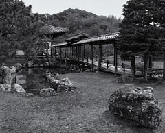 The Moon-Viewing Bridge (Tim Ravenscroft) Tags: bridge temple kodaiji moonviewing landscape garden kyoto japan hasselblad hasselbladx1d monochrome blackandwhite blackwhite