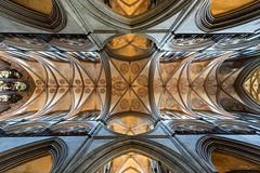 Salisbury Cathedral (Shane Jones) Tags: salisbury salisburycathedral cathedral building ceiling religion christian architecture nikon d810 nikon1424mm