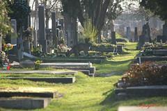 IMG_8367 (Pfluegl) Tags: wien vienna zentralfriedhof graveyard europe eu europa österreich austria chpfluegl chpflügl christian pflügl pfluegl spring frühling simmering