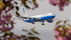 Spring (PH-OTO) Tags: aviation airport schiphol amsterdam livery tulip spring airlines united 767300 767 boeing