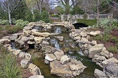 IMG_5543 (Roger Kiefer) Tags: dallas arboretum outdoors beauty nature landscape