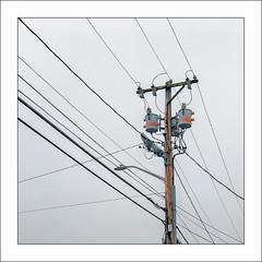 Multi Talented (Timothy Valentine) Tags: 0419 telegraphtuesday large pole lines 2019 transformer brockton massachusetts unitedstatesofamerica us