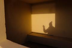 Greetings (A Costigan) Tags: shadow selfie greetings