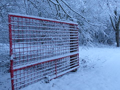 Happy Fence Friday! (Marit Buelens) Tags: belgium belgië happyfencefriday fencefriday fence gate hekken rood red snow sneeuw tree boom hff