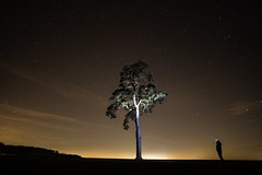 I returned to my favourite tree to try and get a more technically proficient version of this image. It was too windy for the shutter speed last time on top of which, it was overexposed. This time I did a better job...the focus could have been better thoug (colinherd) Tags: suffolk night tree astro f2 12mm samyang