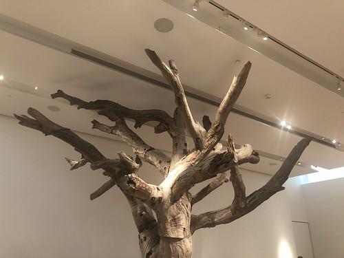 Ai Weiwei: Unbroken