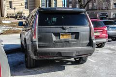 2019 Cadillac Escalade Platinum (Rivitography) Tags: jef5208 newyork cadillac escalade suv 4x4 american gm generalmotors caddy luxury expensive greenwich connecticut 2019 canon 60d adobe lightroom rivitography