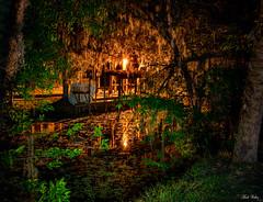 In the Swamp (mwjw) Tags: hontoonlanding deland florida swamp stjohnsriver mwjw markwalter nikond850 nikon24120mm night nightshot longexposure