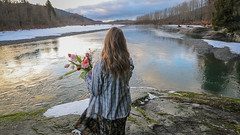Valentines 2019 (Katelynn Manz) Tags: pacific wa northwest girl cottonwood plaid blonde river nooksack deming washington sunset icy snow snowy forest whatcom valentines bouquet rose roses tulips