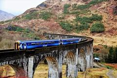 156446 @ Glenfinnan (A J transport) Tags: class156 supersprinter 156446 railway dmu scotrail saltirelivery viaduct trains scotland
