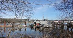 Ship yard jetty (D70) Tags: northarm fraserriver luluisland richmond britishcolumbia canada ship yard jetty tommac shipyard bcs best small established since 1963