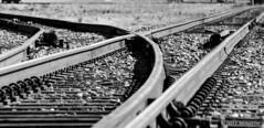 Historic Petersburg (michael_orr25) Tags: petersburg virginia tamron18400f3563diiivchld nikond7500 monochrome train